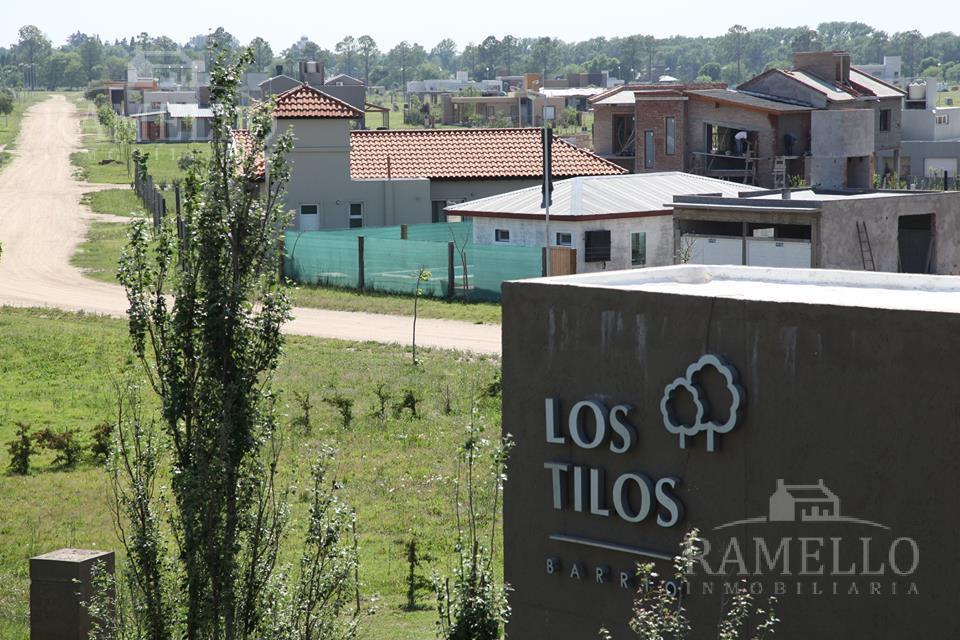 Foto Terreno en Venta en  Los Tilos,  Las Higueras  Los Tilos
