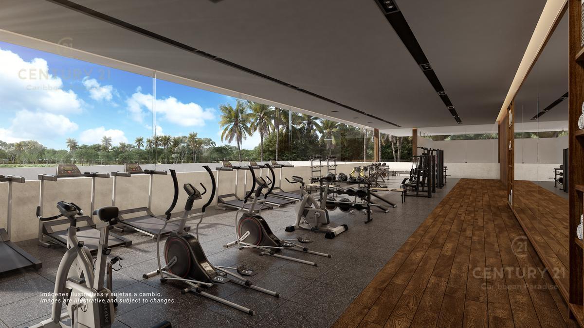 Quintana Roo Terreno for Venta scene image 5