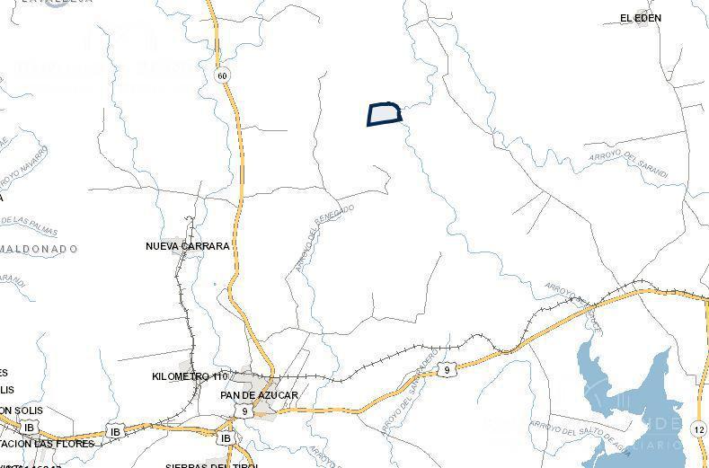 Foto Campo en Venta en  Pan de Azúcar ,  Maldonado  Ruta 60  a 15 km de Pan de Azúcar