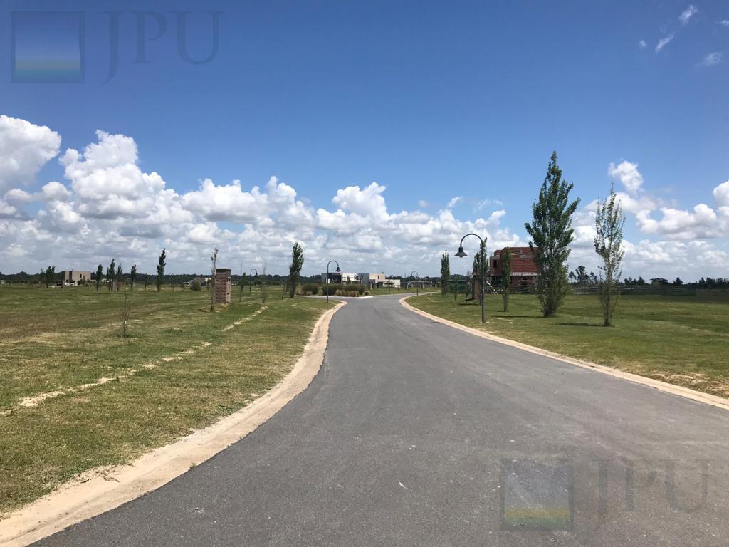 Foto Terreno en Venta en  El Naudir,  Countries/B.Cerrado (Escobar)  El Naudir al 100