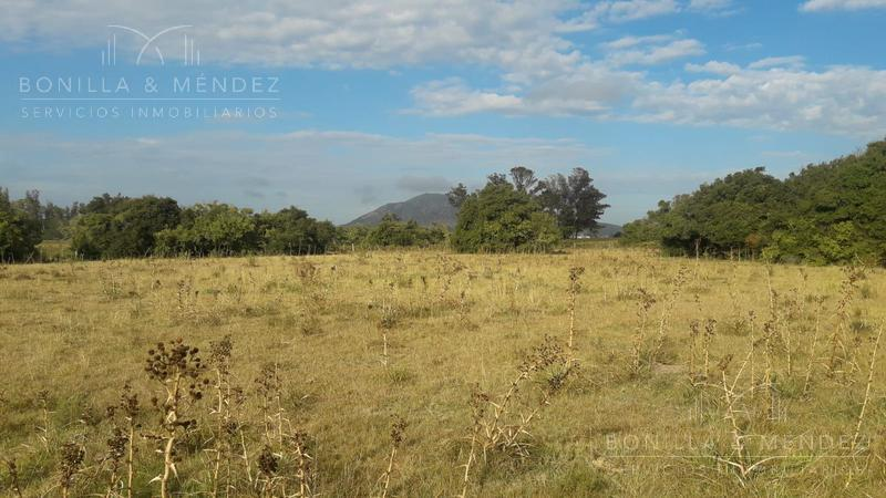 Foto Campo en Venta en  Pan de Azúcar ,  Maldonado  Pan de Azúcar Rural, Ruta 9
