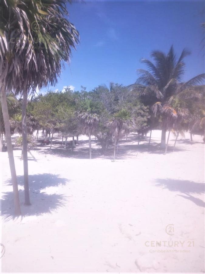 Isla Blanca Terreno for Venta scene image 3