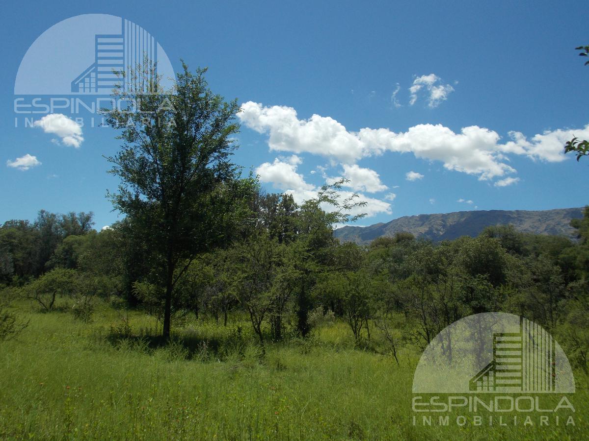 Foto Terreno en Venta en  Piedra Blanca Abajo,  Merlo  Piedra Blanca-  1.952m2