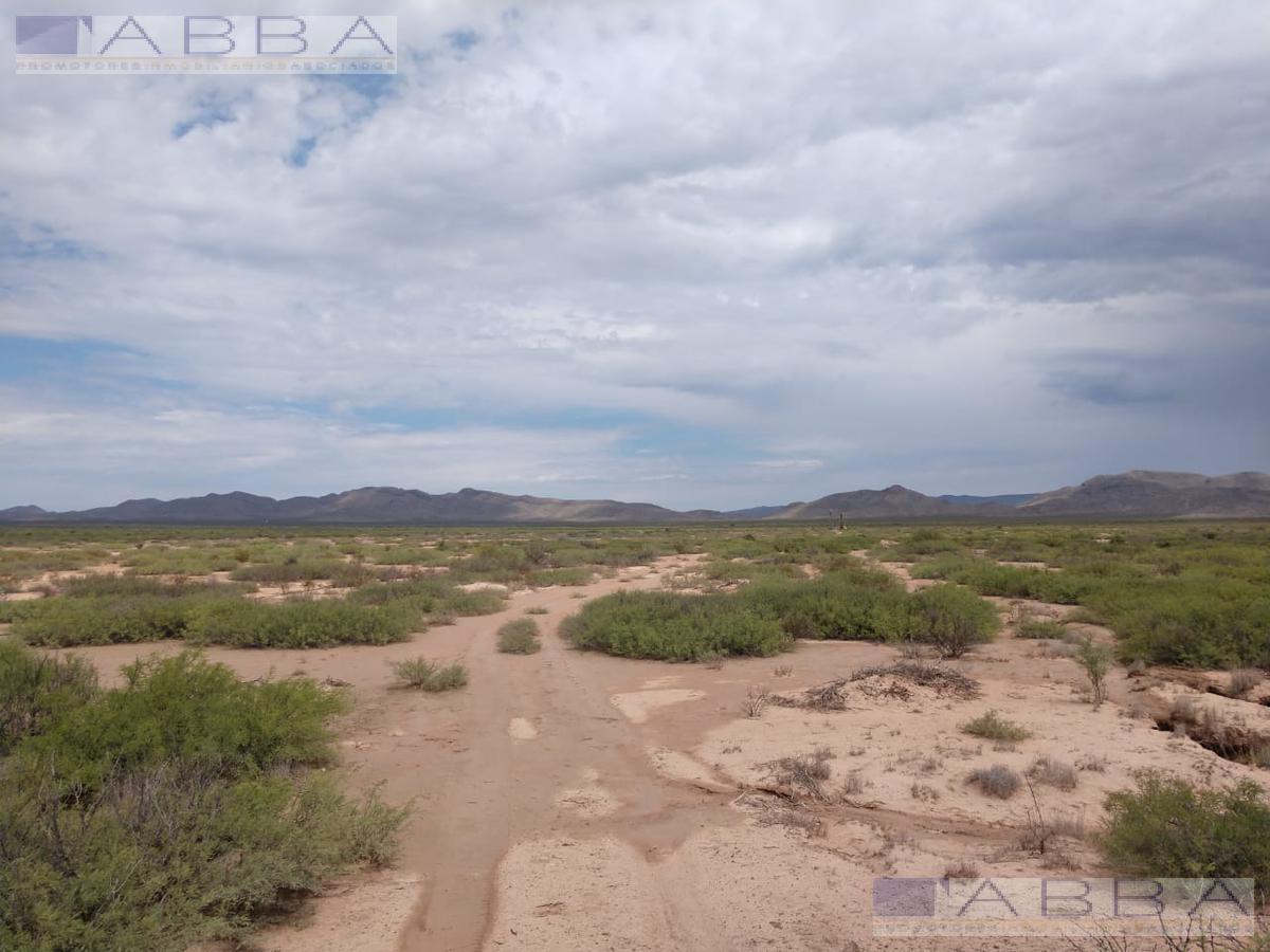 Foto Finca en Venta en  Coyame del Sotol ,  Chihuahua  Rancho ganadero en Venta