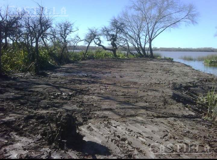 Foto Terreno en Venta en  Parana De Las Palmas Tigre,  Zona Delta Tigre  Paraná de las Palmas entre antequera y