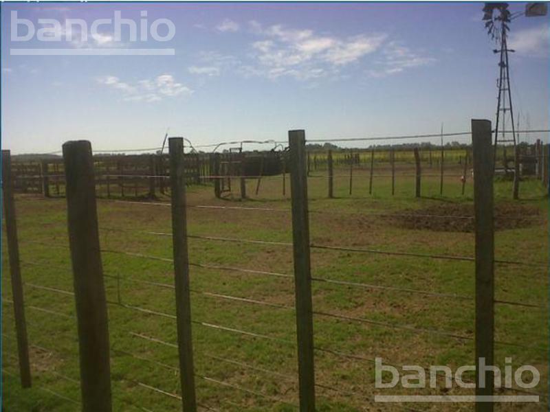 350 HA MIXTAS LAGUNA PAIVA, Laguna Paiva, Santa Fe. Venta de División campos - Banchio Propiedades. Inmobiliaria en Rosario
