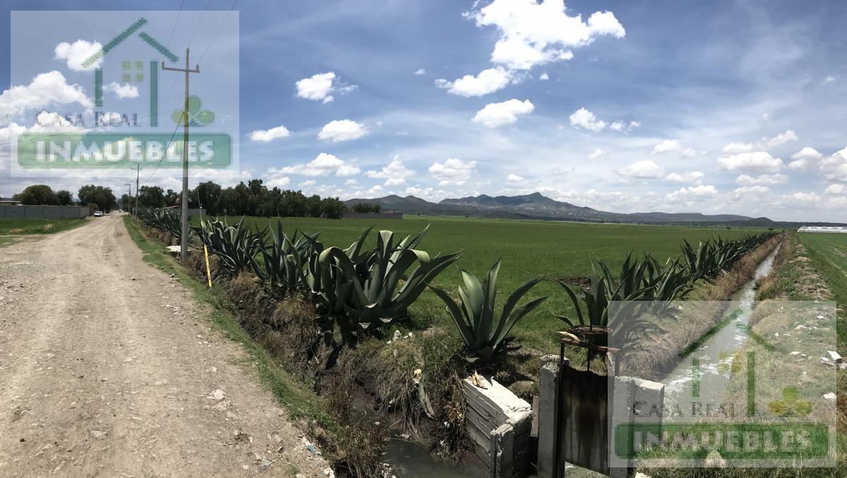 Foto Terreno en Venta en  Poblado comunal San Miguel la  Higa,  Mineral de la Reforma  Terreno en La Higa, Palma Gorda, Mineral de la Reforma