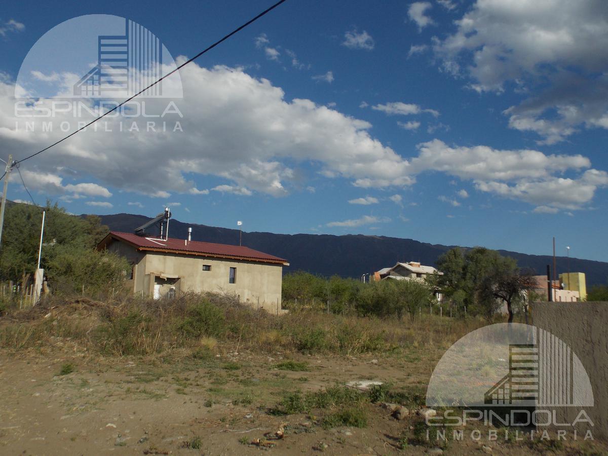 Foto Terreno en Venta en  Las Moreras,  Merlo  Cornalina