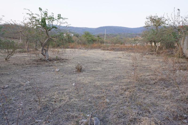 Foto Terreno en Venta en  Tepetzingo,  Emiliano Zapata  Venta de terreno en Emiliano Zapata, Morelos...Clave 2116