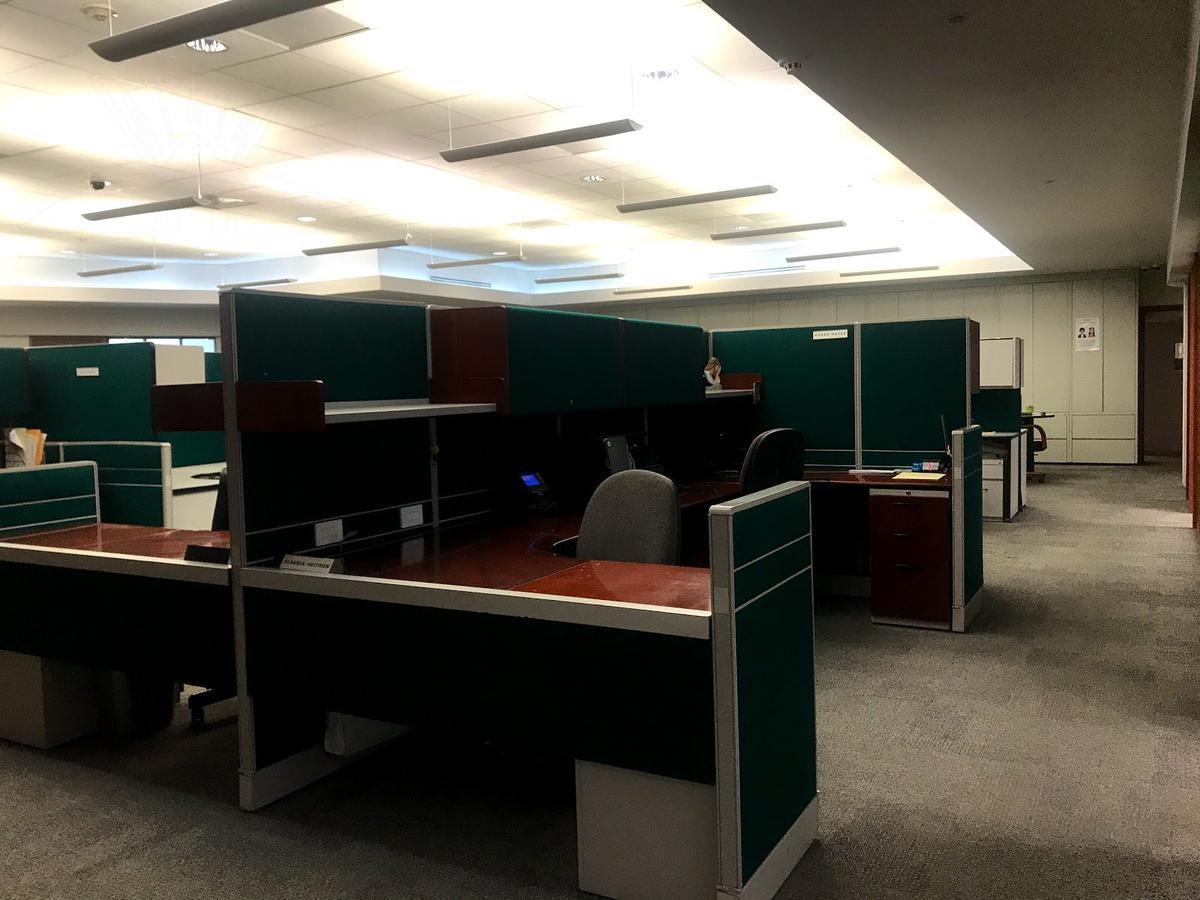 Foto Oficina en Renta en  Bosques de las Lomas,  Cuajimalpa de Morelos  Bosques de las Lomas, excelente oficina a la renta en Bosque de Alisos (MC)