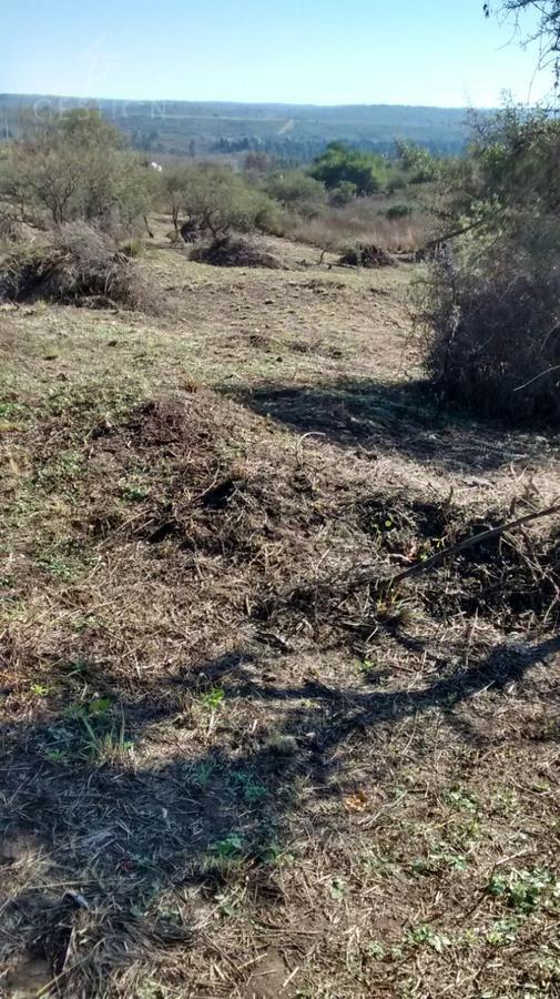 Foto Terreno en Venta en  Villa Parque Siquiman,  Punilla  PARQUE SIQUIMAN