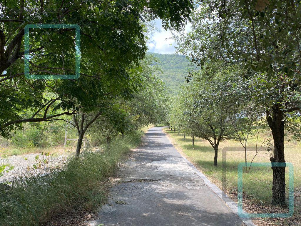 Foto Terreno en Venta en  Hacienda Los Encinos,  Monterrey  VENTA DE TERRENOS LOS AZULEJOS ZONA CARRETERA NACIONAL MONTERREY