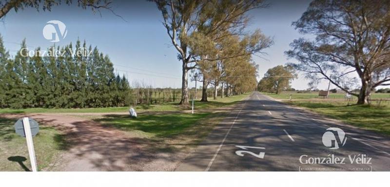 Foto Chacra en Venta en  Carmelo ,  Colonia  A 600m de Ruta 21 y 4km de Carmelo