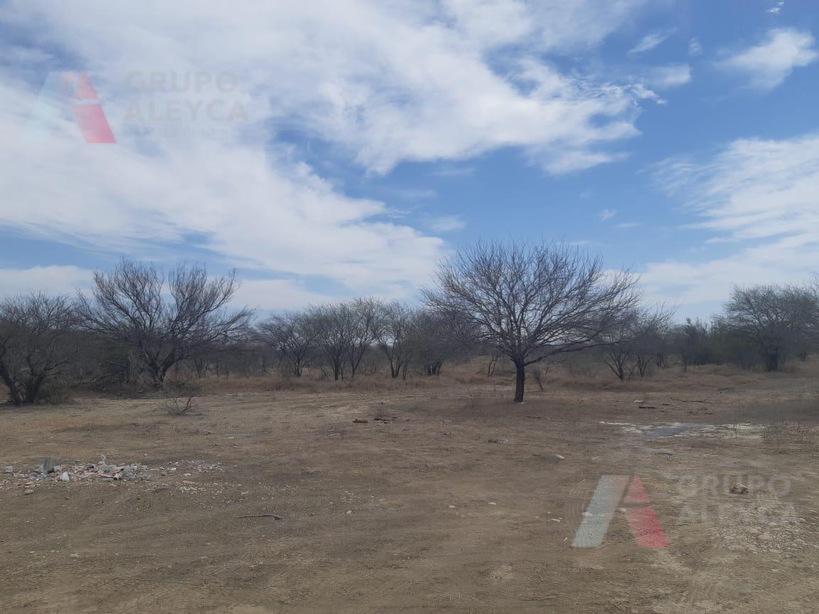 Foto Terreno en Venta en  Cerro Prieto,  Linares  Com. San Angel