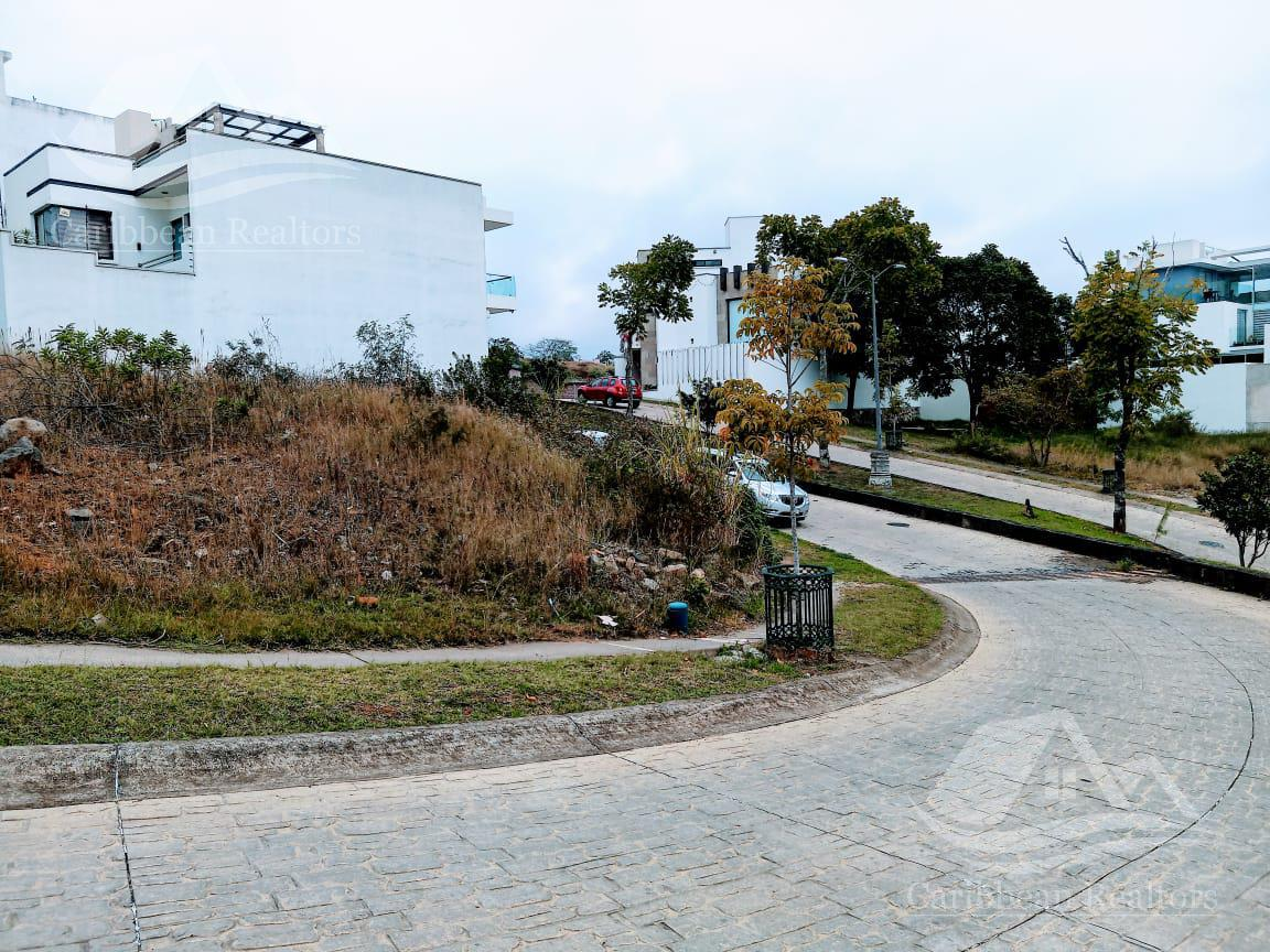 Picture Land in Sale in  Xalapa ,  Veracruz  Xalapa