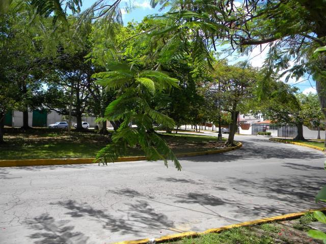 Foto Departamento en Renta en  Supermanzana 15,  Cancún  Departamento en Renta en Cancún, Supermanzana 15. De 2 Recámaras Muy Céntrico