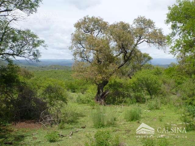 Foto Campo en Venta en  Cordoba Capital ,  Cordoba  Villa Amancay - Cerro Pelado - Calamuchita