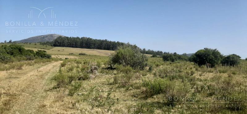 Foto Campo en Venta en  Pan de Azúcar ,  Maldonado  Pan de Azúcar Rural oportunidad para fraccionamiento