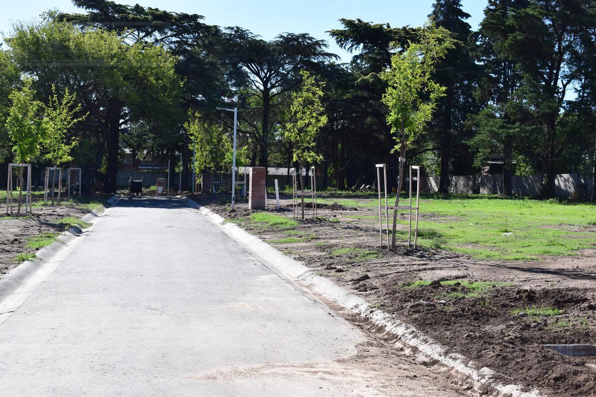 Terreno - Las Lomas-Horqueta