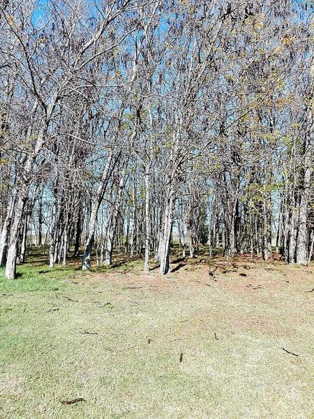 Foto Terreno en Venta en  Estancias Del Pilar,  Countries/B.Cerrado (Pilar)  Estancias del Pilar