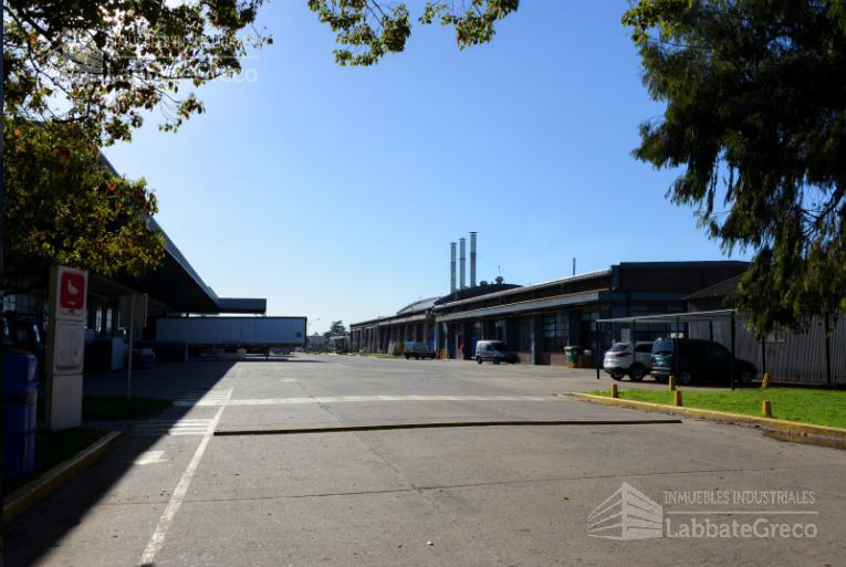 Foto Nave Industrial en Alquiler en  Villa Ballester,  General San Martin  Roca 4700