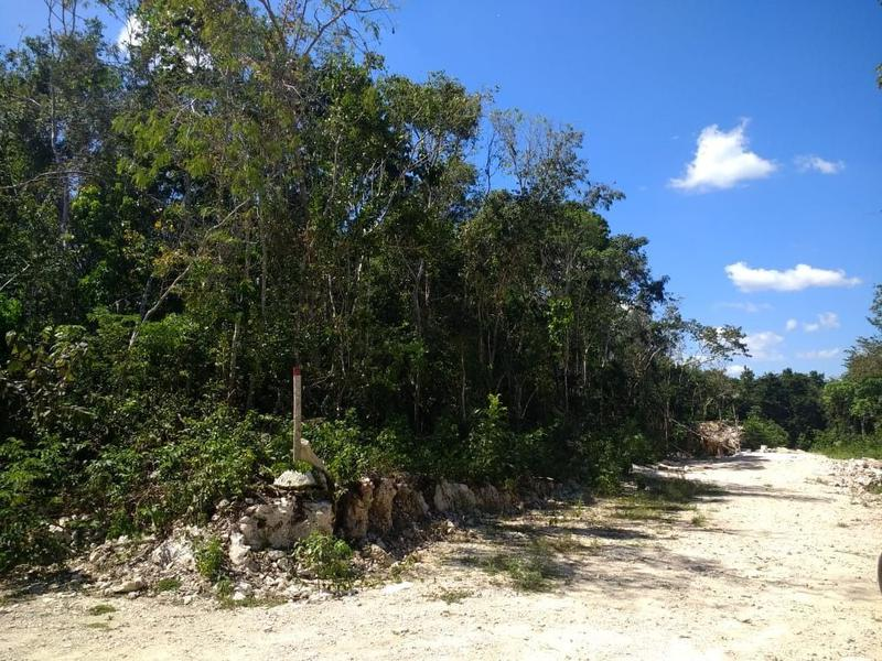 Foto Terreno en Venta en  Playa del Carmen ,  Quintana Roo  Lote oportunidad de 530 m2 sobre Av Juarez Playa del Carmen P2720