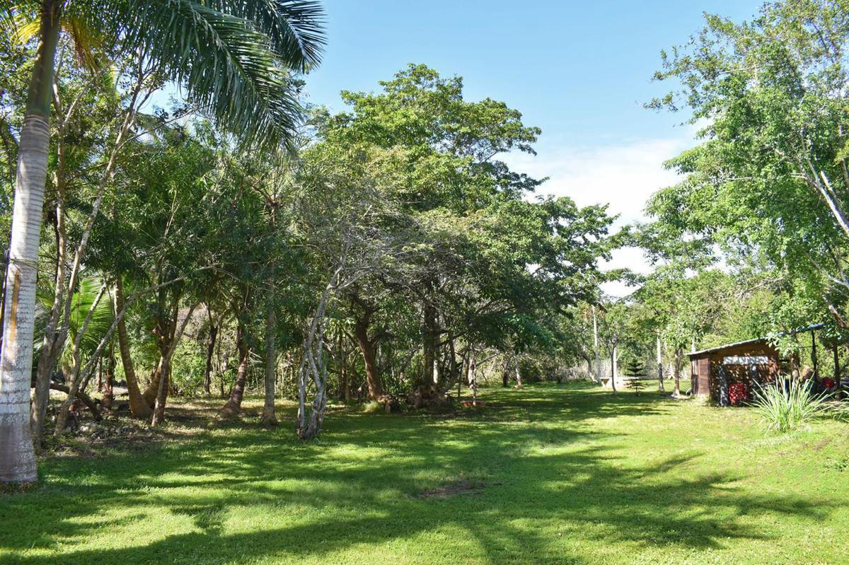Buenavista Land for Sale scene image 22