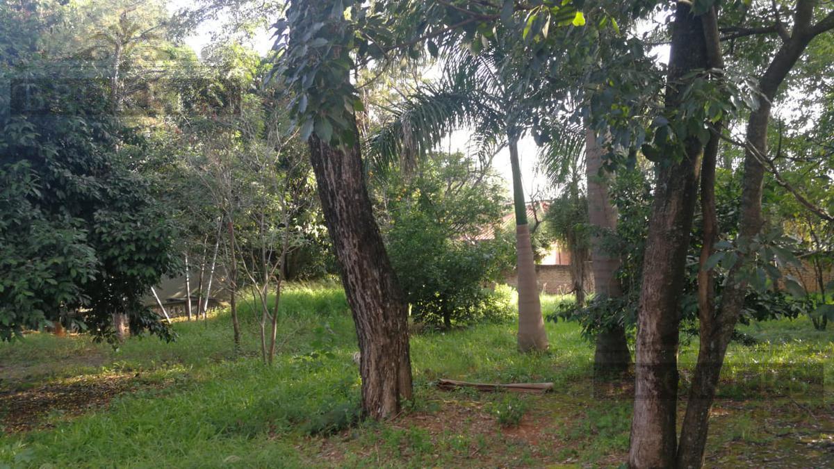 Foto Terreno en Venta en  Kennedy,  Lambaré  Vendo tres Terrenos Sup. 1.260 m2 Bo. Kennedy, Lambaré