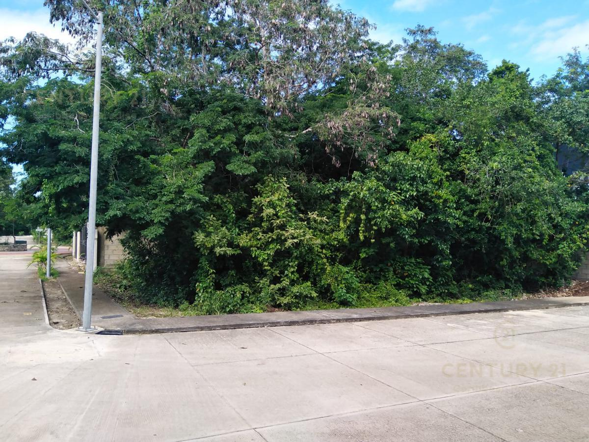 Playa del Carmen Terreno for Venta scene image 3