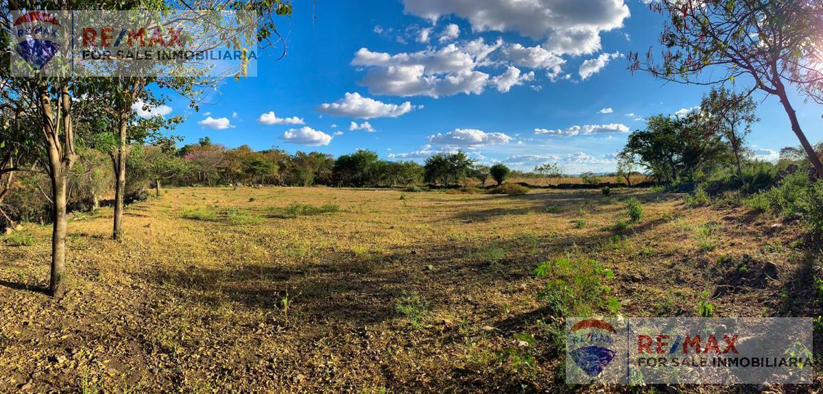 Foto Terreno en Venta en  Temoac ,  Morelos  Terreno plano, Temoac, Morelos, ideal para desarrolladores…Clave 3033