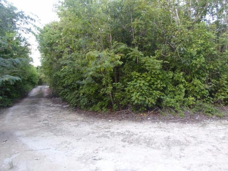Foto Terreno en Venta en  Alamos II,  Pinamar  Se Vende Terreno de 1000 metros2 en Cancun Alamos II