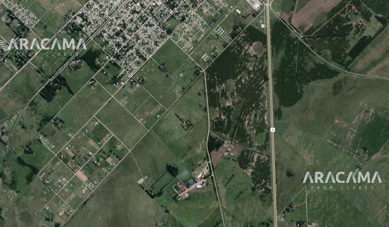 Foto Campo en Venta en  Cañuelas ,  G.B.A. Zona Sur  Cañuelas