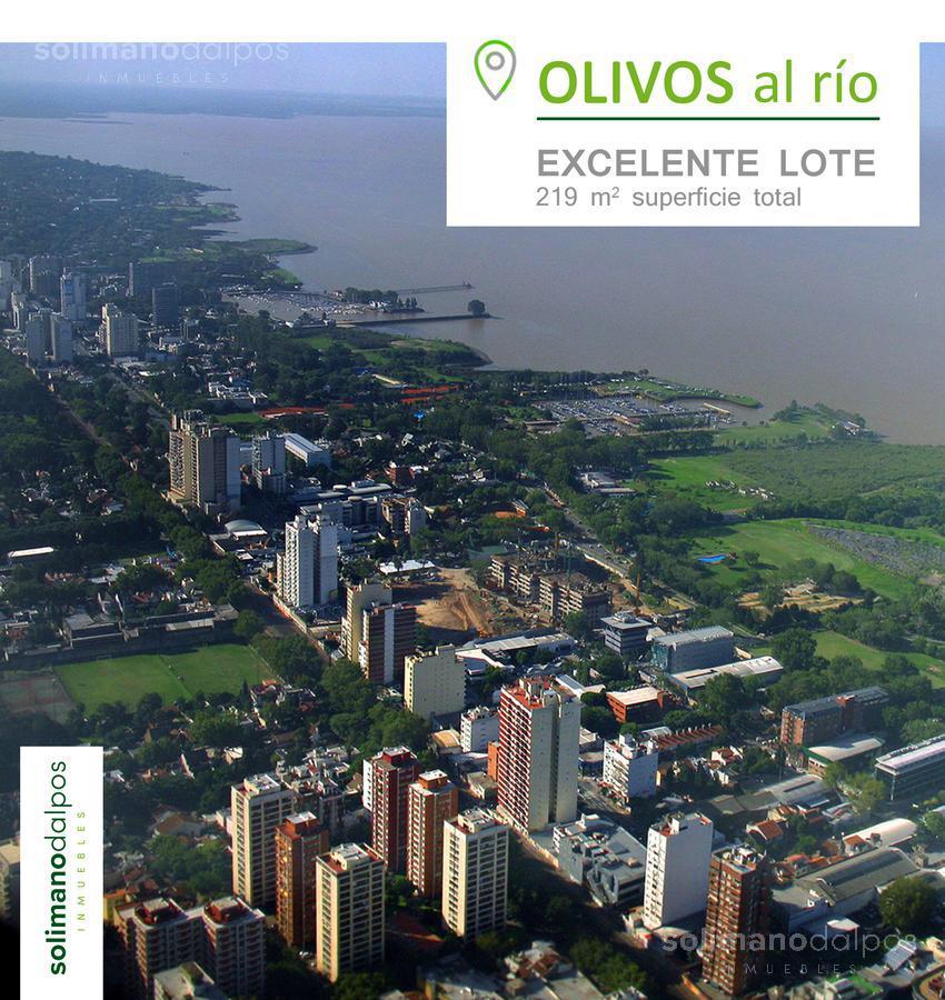 Foto Terreno en Venta en  Olivos,  Vicente Lopez  URIBELARREA, M. de al 300