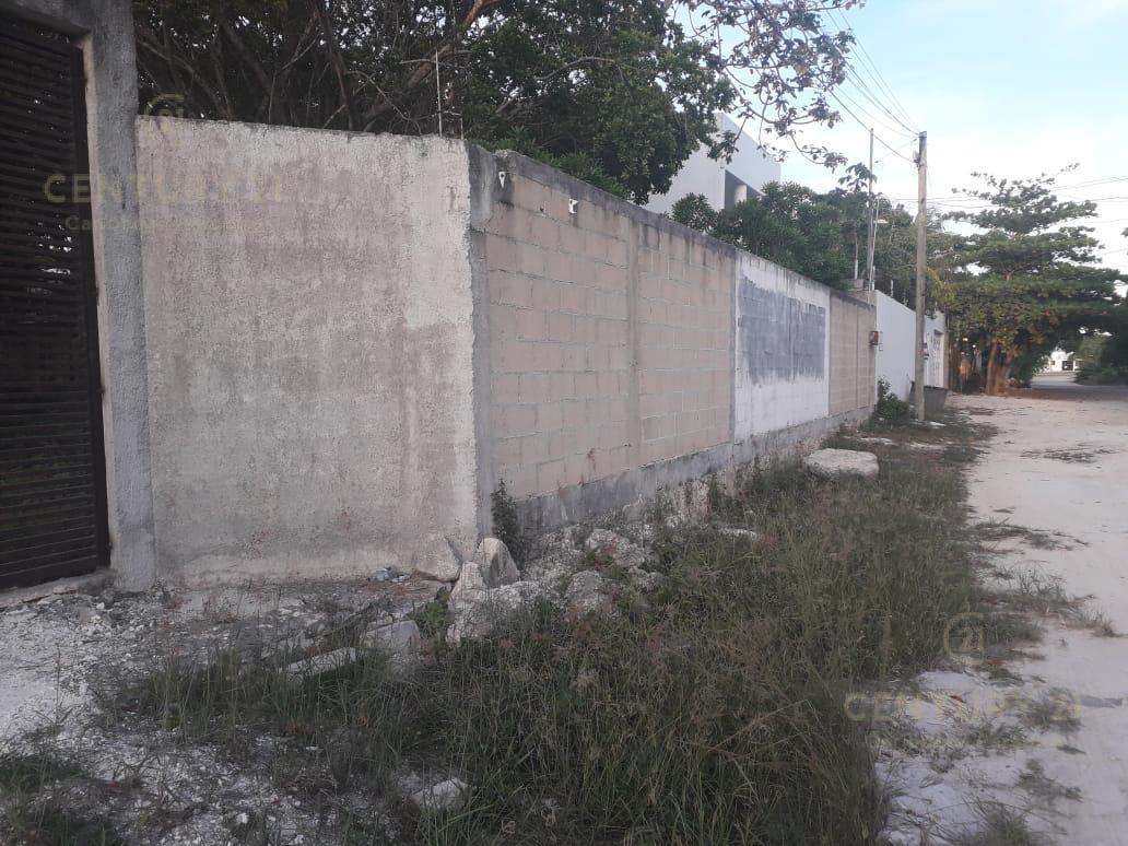 Benito Juárez Land for Sale scene image 7