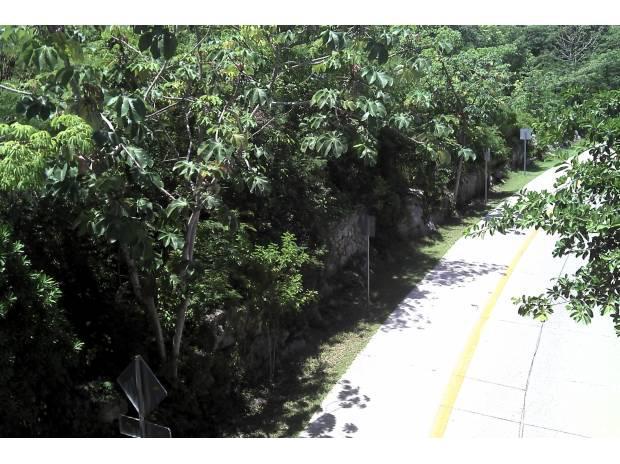 Playa del Carmen Land for Sale scene image 12