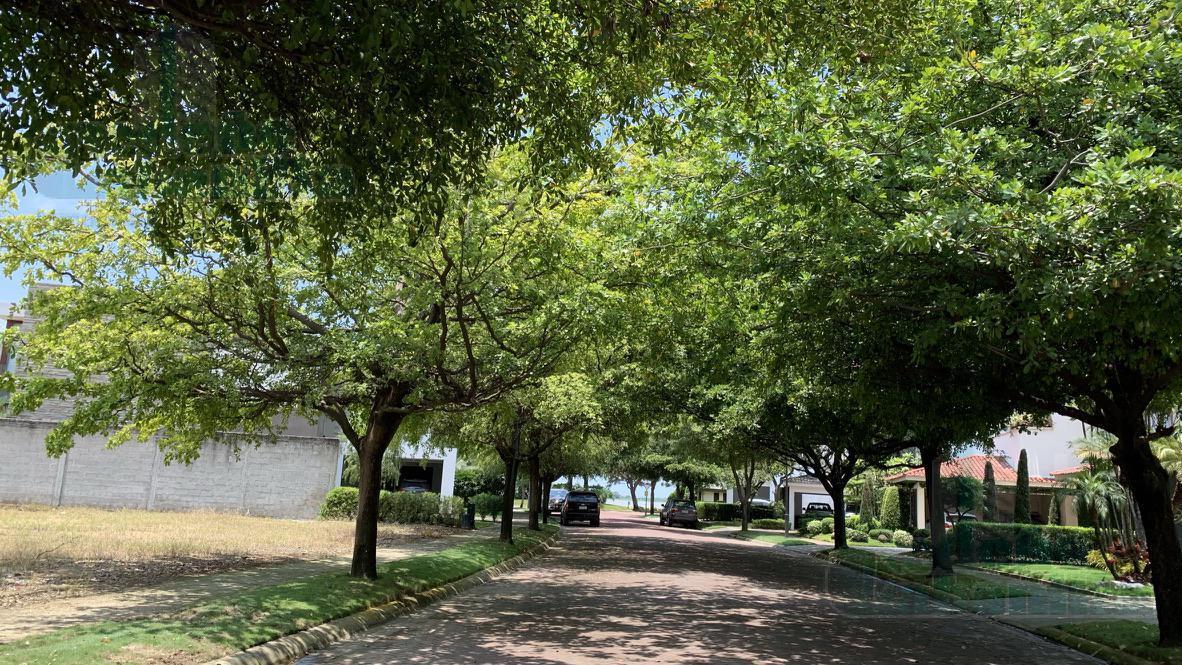 Foto Terreno en Venta en  Samborondón ,  Guayas  VENTA DE TERRENO ISLA MOCOLI EXCELENTE METRAJE