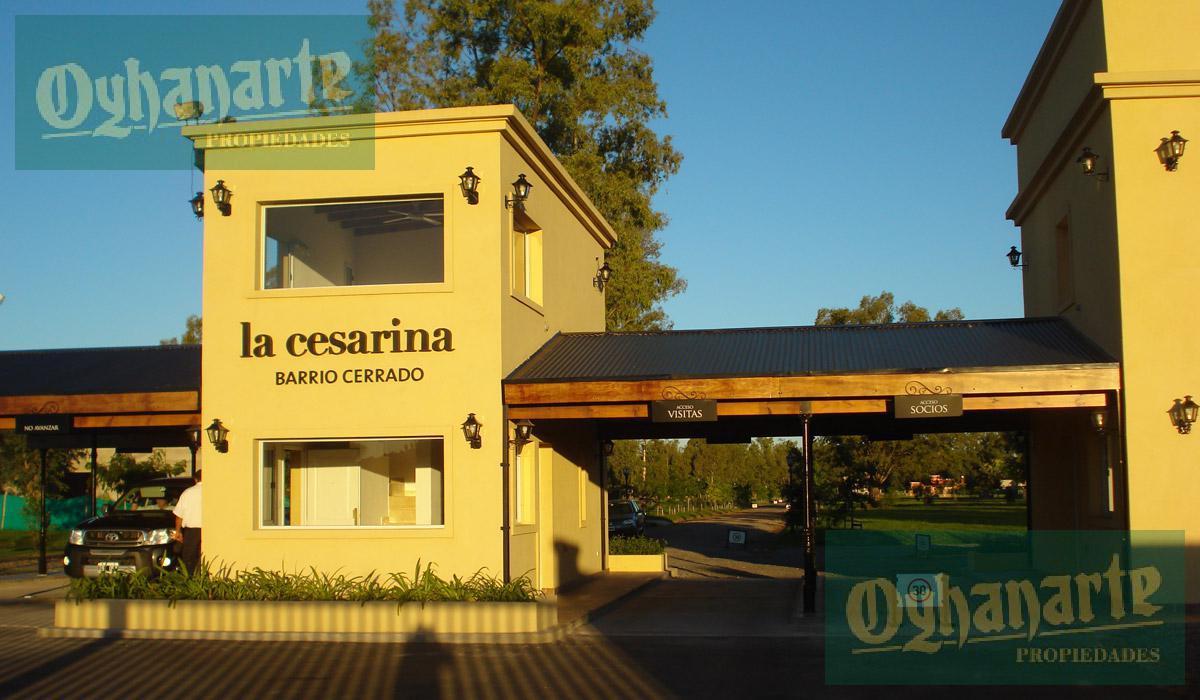 Foto Terreno en Venta en  La Cesarina,  General Rodriguez  La Cesarina Lote al 100