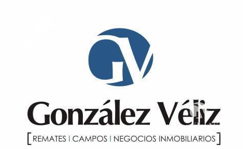 Foto Chacra en Venta en  Villa Soriano ,  Soriano  Soriano - Campo 90 h.a