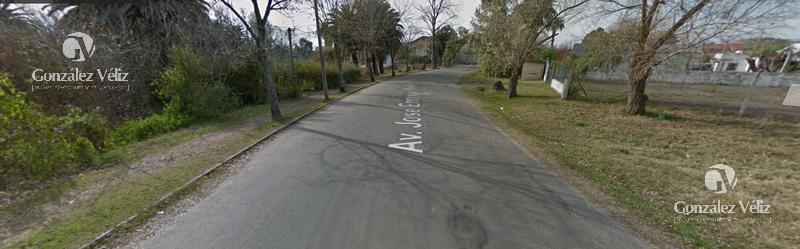 Foto Terreno en Venta en  Carmelo ,  Colonia  Avda Rodo a 100m del arroyo