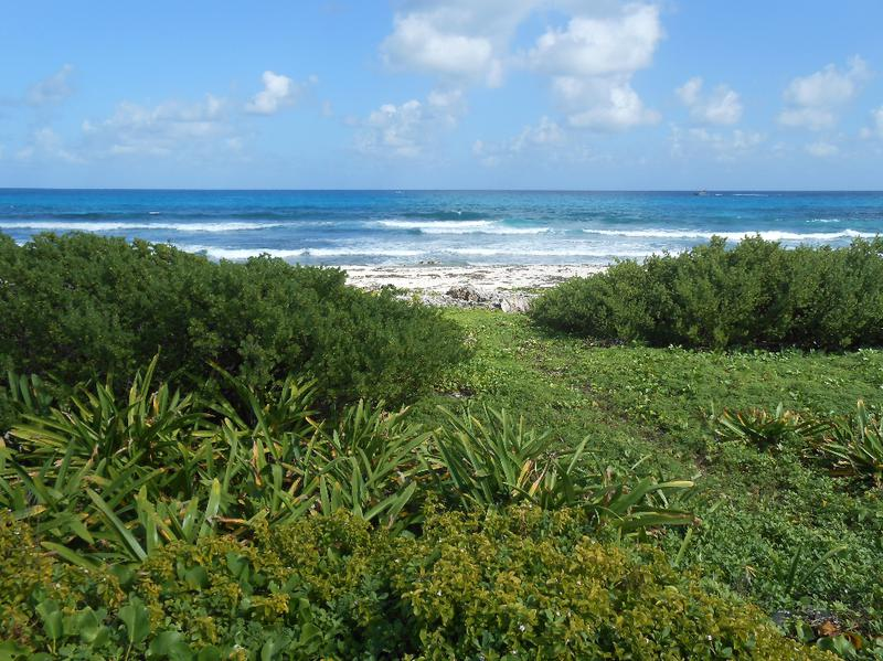 Isla Mujeres Centro Land for Sale scene image 1