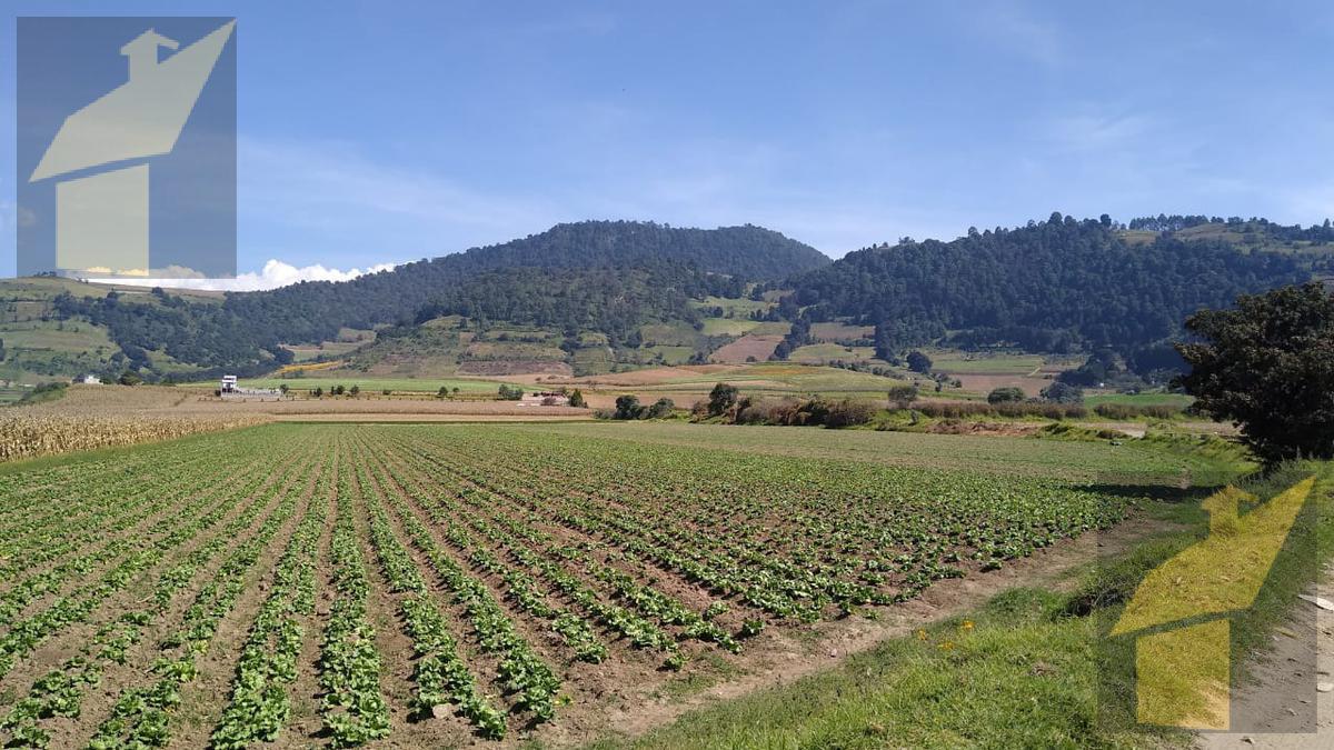 Foto Terreno en Venta en  Tenango del Valle ,  Edo. de México  Tenango del Valle