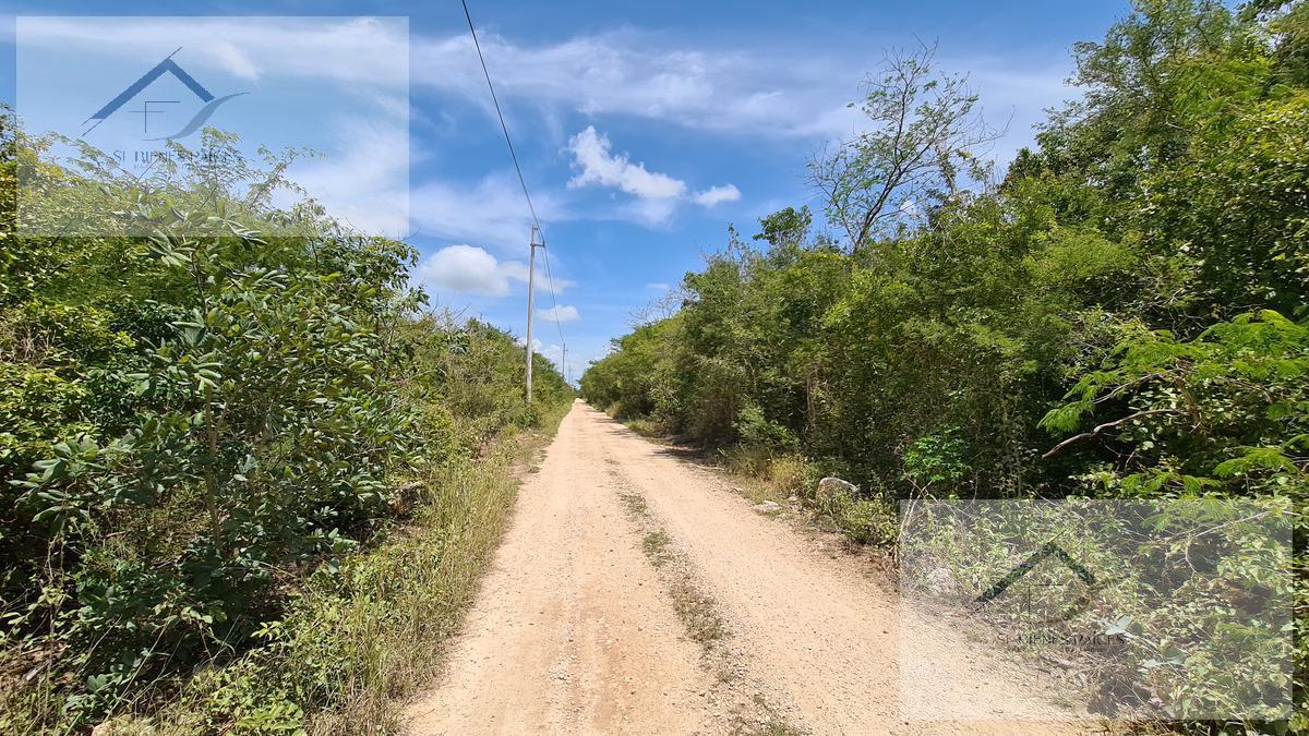 Foto Terreno en Venta en  Mérida ,  Yucatán  Lotes de inversión PALUMAR Segunda etapa