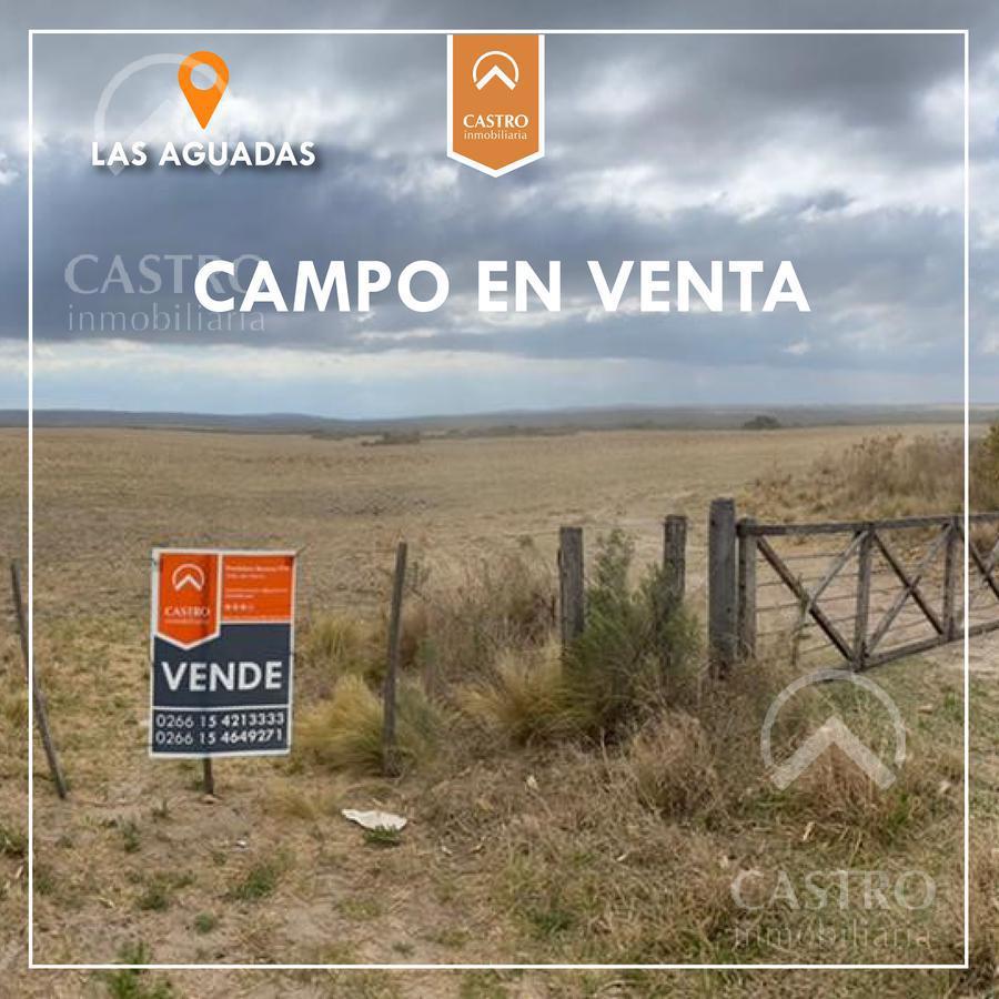 Foto Campo en Venta en  Las Aguadas,  San Martin  Las Aguadas