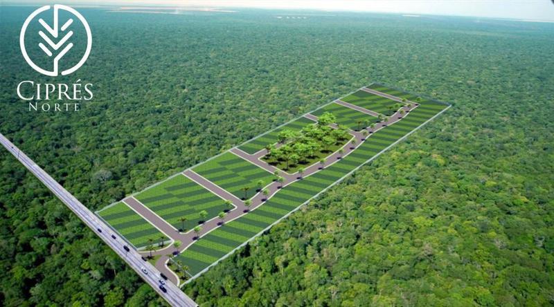 Foto Terreno en Venta en  Tekax ,  Yucatán  Lotes  residenciales en preventa a 15 min de Periférico Norte, Cipres