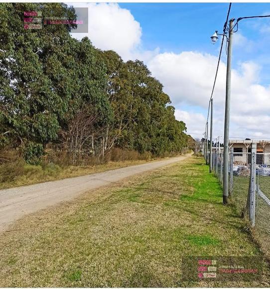 Foto Terreno en Venta en  La Plata,  La Plata  650 118 y 118