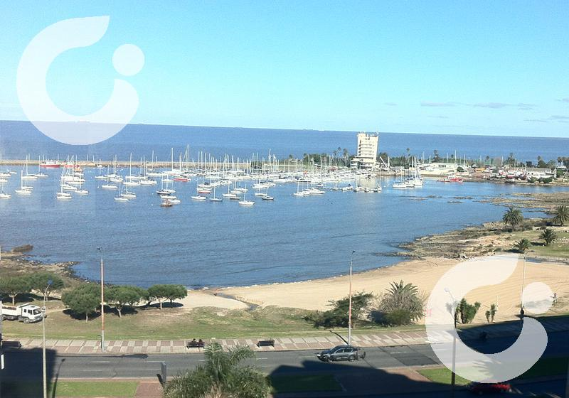 Foto Departamento en Venta | Alquiler en  Puerto Buceo ,  Montevideo  TRIPLEX PUERTITO de BUCEO