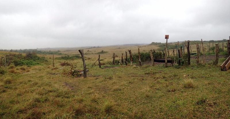 Foto Terreno en Venta en  Rancho o rancheria El Colorado,  Coatzacoalcos  Terreno en Venta, Carolino Anaya, Ejido Colorado