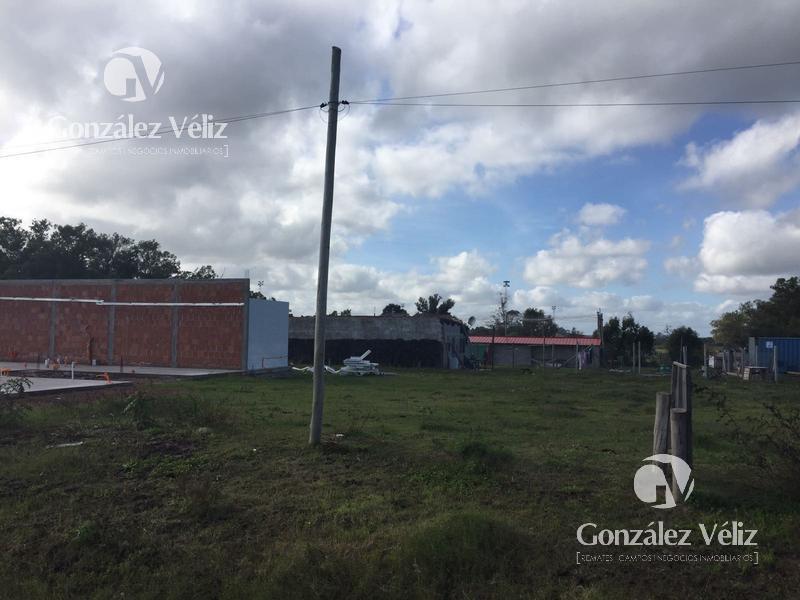 Foto Terreno en Venta en  Carmelo ,  Colonia  Rincon entre Ansina y Tomas Nuñez - Nuevo Precio