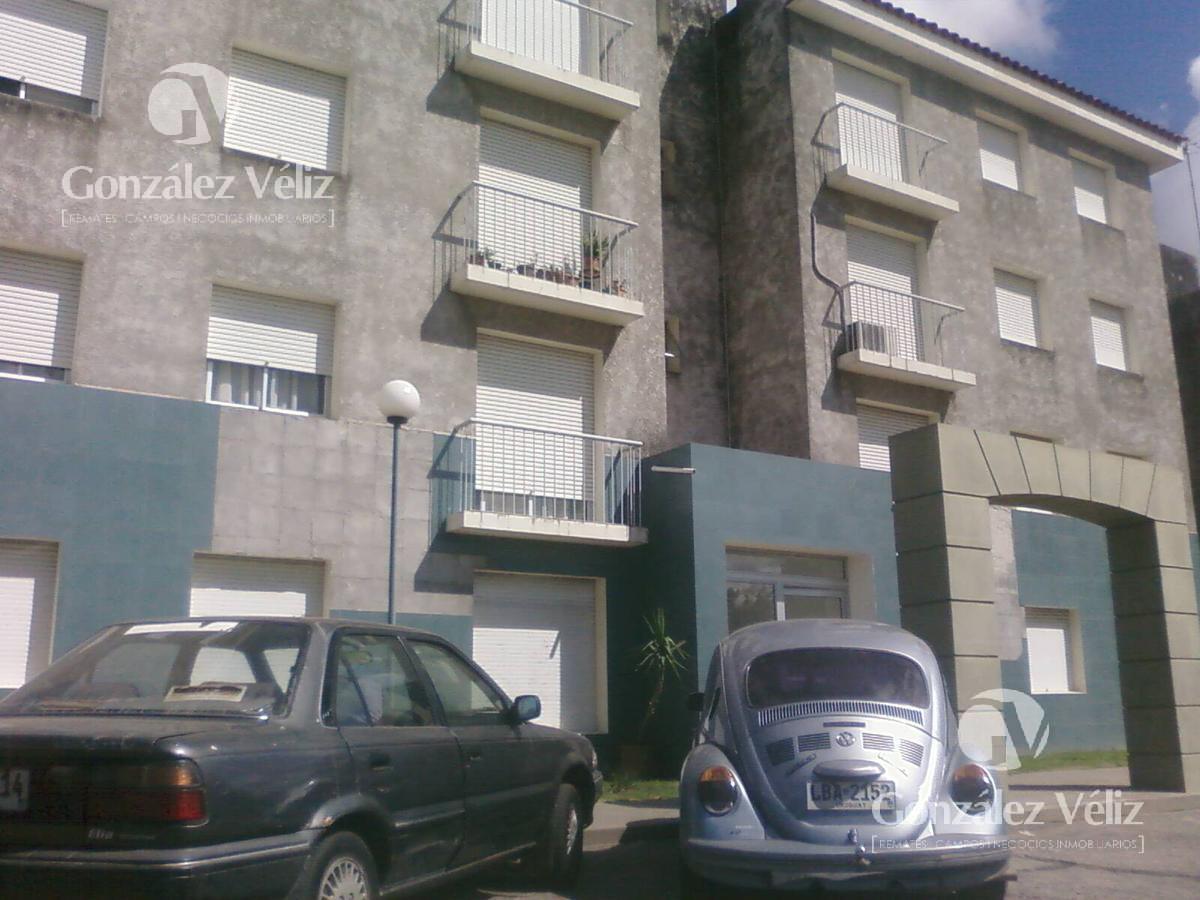 Foto Casa en Alquiler en  Carmelo ,  Colonia  Ibirapita