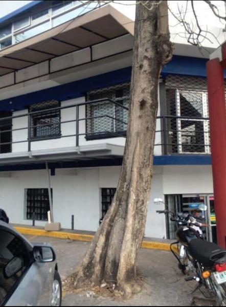 Foto Local en Renta en  Francisco Morazán,  Distrito Central  Local En Renta Comercial Bouelvard Morazan Tegucigalpa